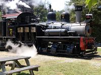 Steam Train Tour